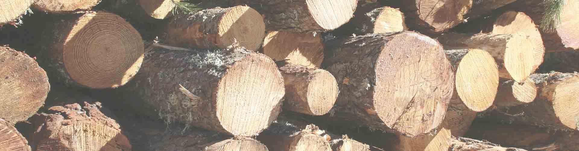 Venta de pellet en majadahonda burupellets pellet para calefacci n - Lena majadahonda ...